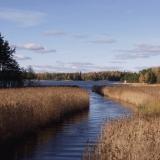 Blindsundin salmi yhdistää Morsfjärdenin Suomenlahteen