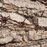 Barbed wire and a stone wall