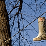 A rubber boot hanging from a tree support cable