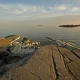 Skatanniemi sukeltaa Suomenlahteen