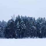 Island at Holma-Saarijärvi