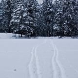 Two ski tracks at lake Holma-Saarijärvi