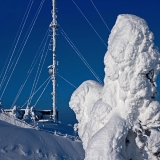 Packed snow on a tree next to a TV mast