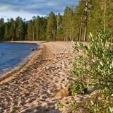 Venäjänhiekka Tiilikkajärven kansallispuistossa