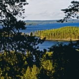 Lake Pielinen and its islands seen from Koli