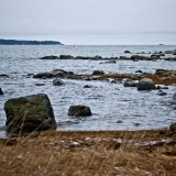 Särkkäniemen rantaa