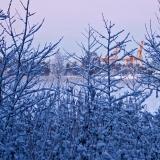 Talvinen näkymä Uutelan laguuneilta Vuosaaren satamaan