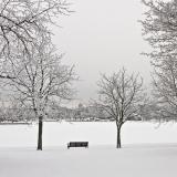 Luminen Tokoinranta