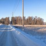 Winter panorama I