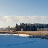 Winter panorama II