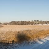 Winter panorama V