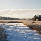 Talvipanoraama VI