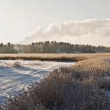 Winter panorama VII