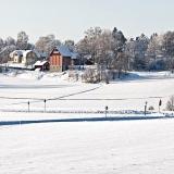 Winter panorama XII
