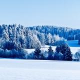 Talvipanoraama XV