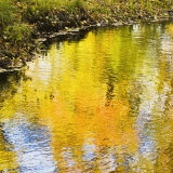 Autumn colors reflect from the surface of a pond