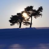 Talvinen kajastus