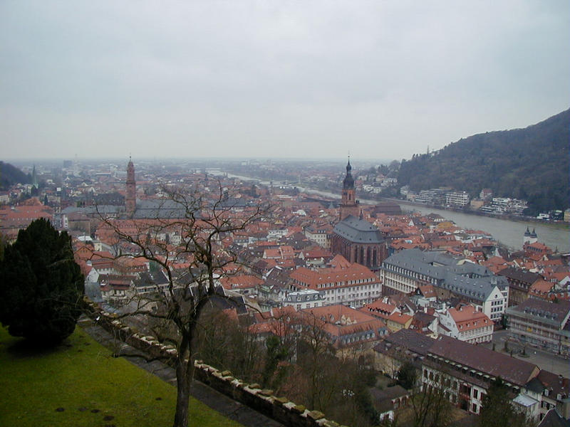 A view from the Heidelberg Castle to the old town