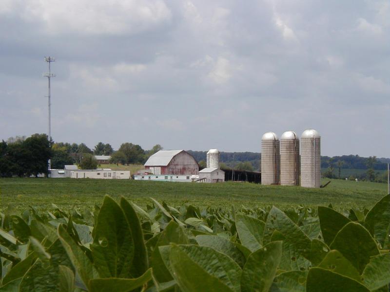 Pelto ja maatila