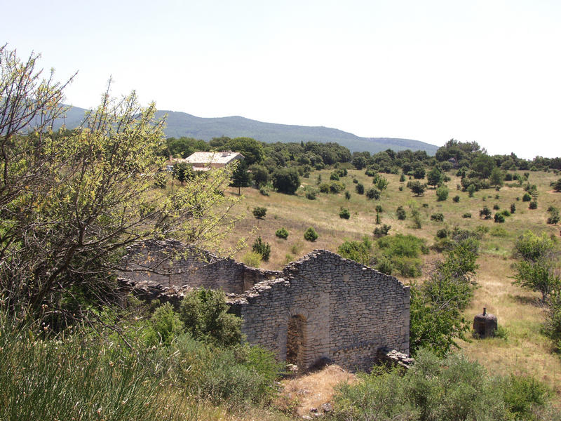 A house's ruins