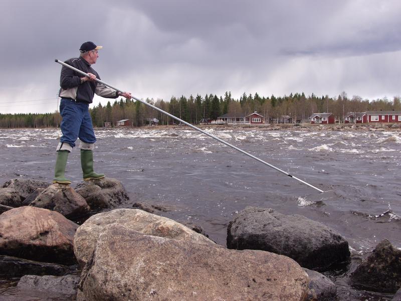Kalastaja työssään