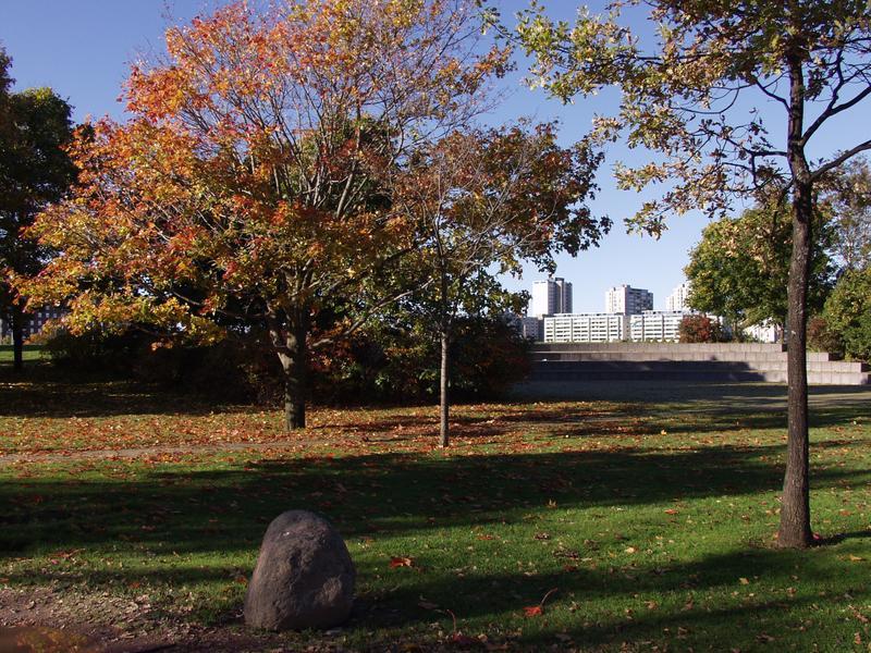 Tervasaarta syksyllä, taustalla Merihaka