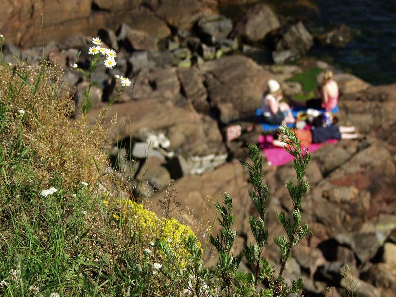 People sunbathing at Kustaanmiekka cliffs outside the embankments