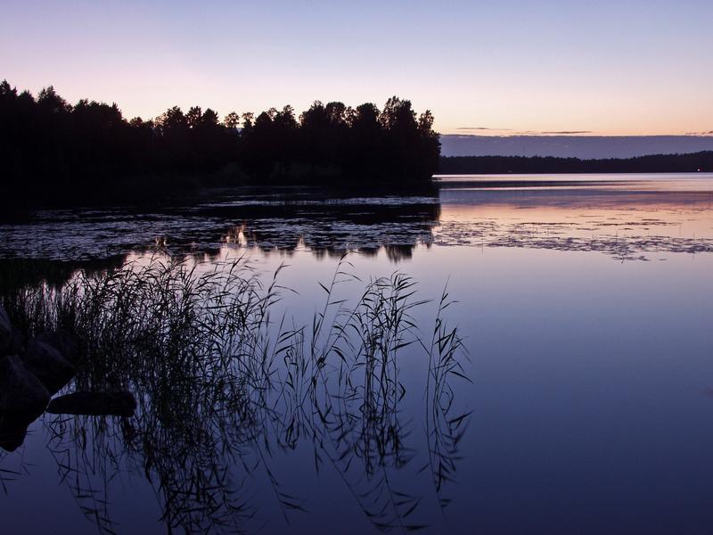 A quiet lake Rusutjärvi