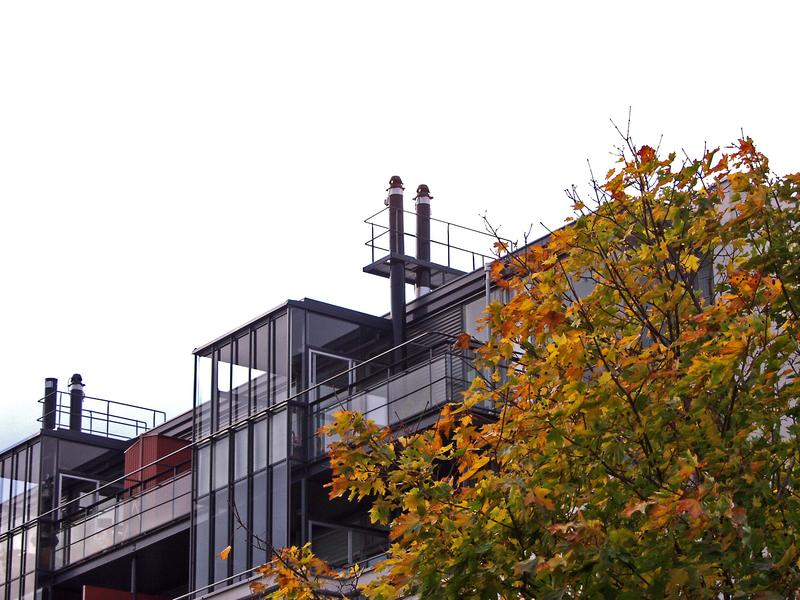 Penthouses and a tree in autumn