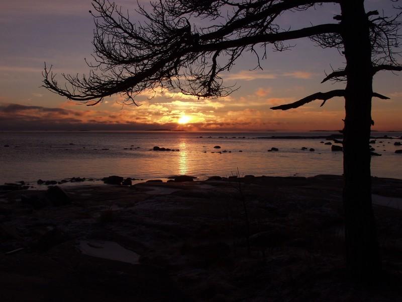 Auringonlasku Veijarivuoren puistossa