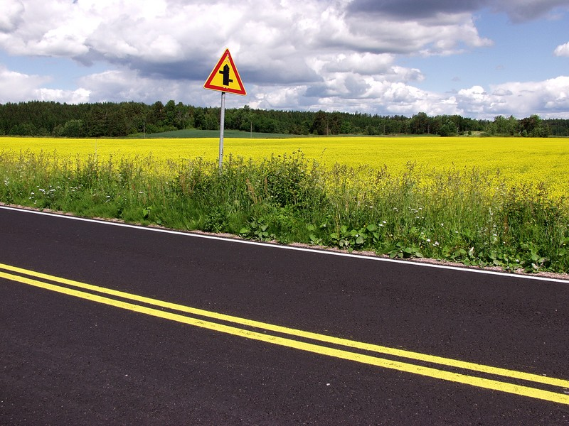 Road, roadsign and a field