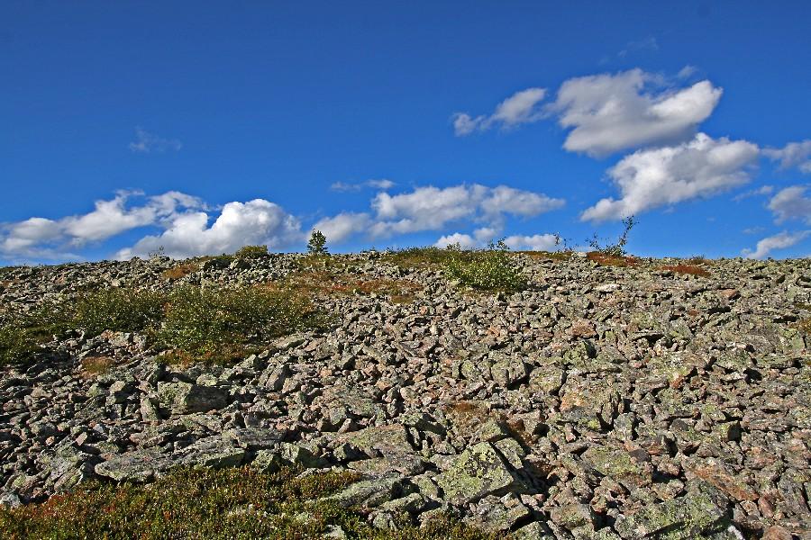 Rakkaa Pellisenpäällä Lemmenjoen kansallispuistossa