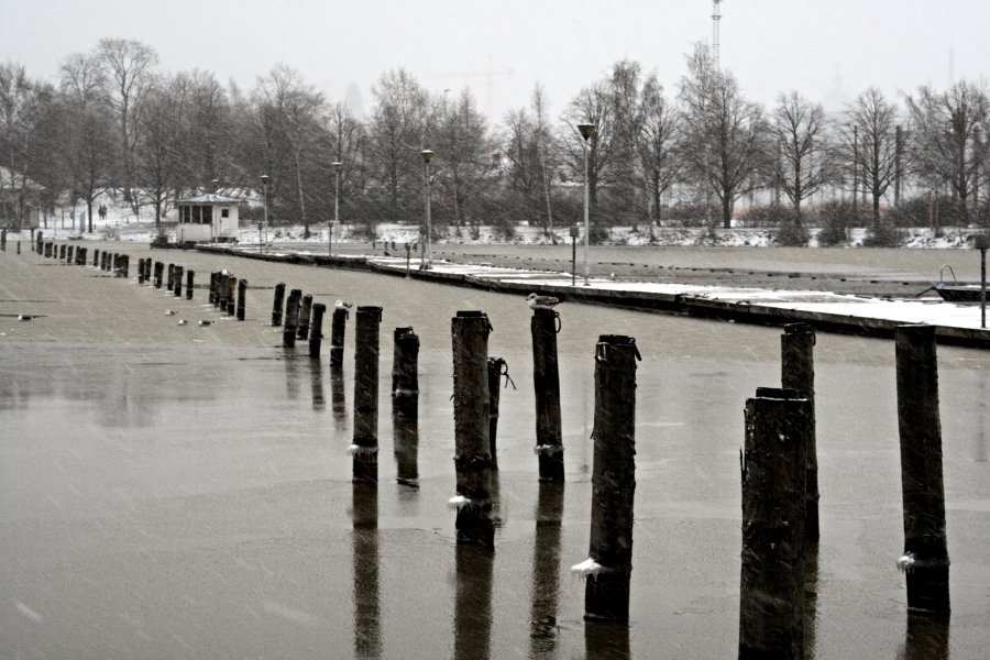 A boat platform and poles on a snowy afternoon