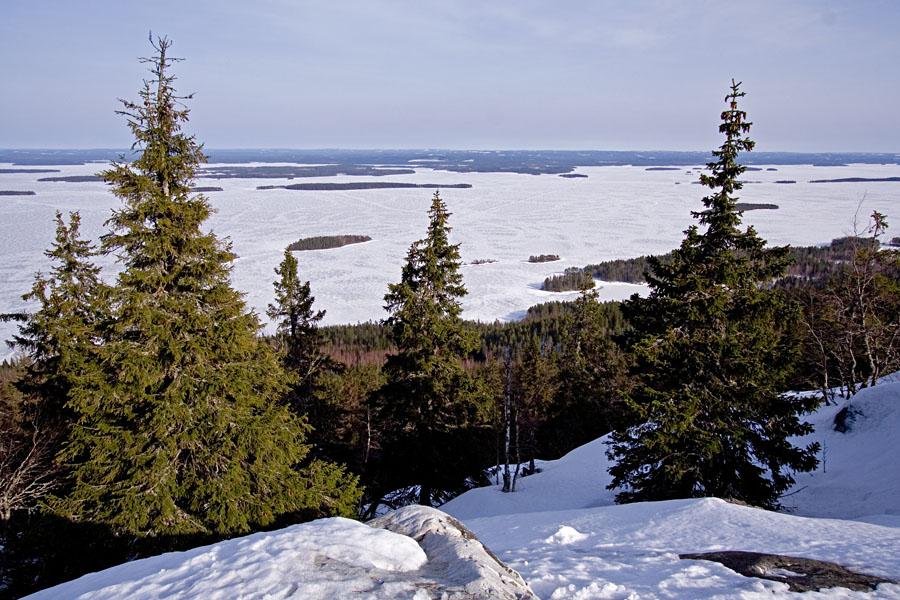 Suomen kansallismaisema: Pielinen nähtynä Kolilta
