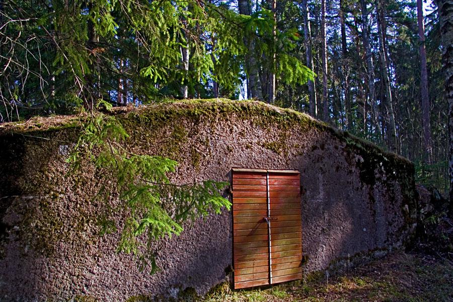Entrance to a cellar