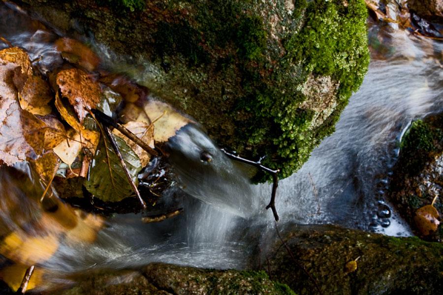Syksyinen puro