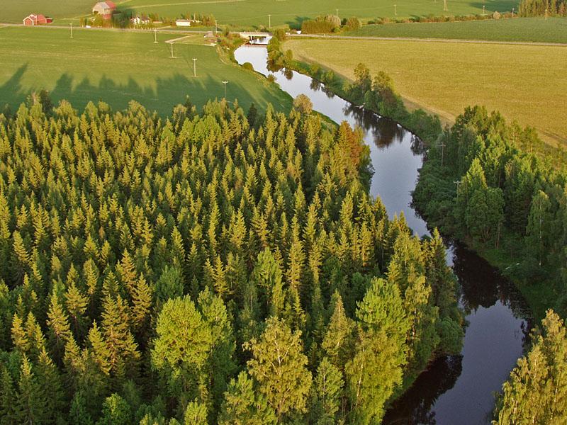 Mäntsälänjoki virtaa metsikön ja peltomaiseman läpi
