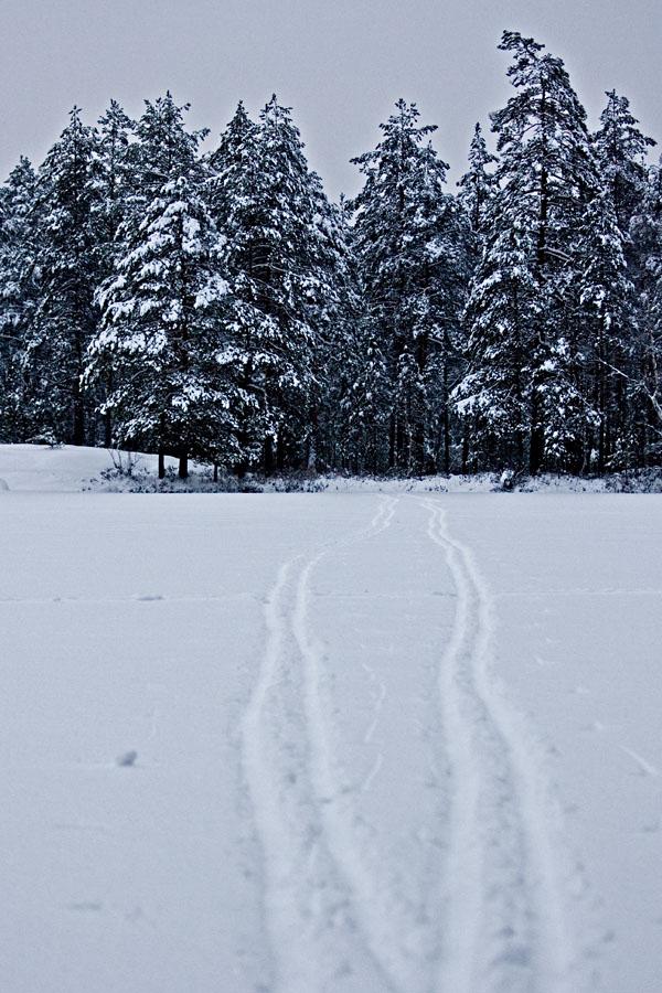 Two ski tracks at lake Holma-Saarijärvi