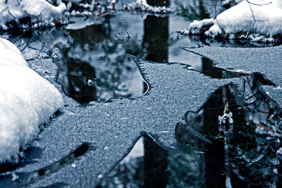 An icy creek
