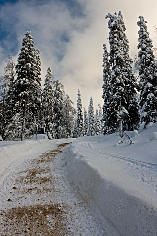 Talvinen tie Kumpuvaaralla