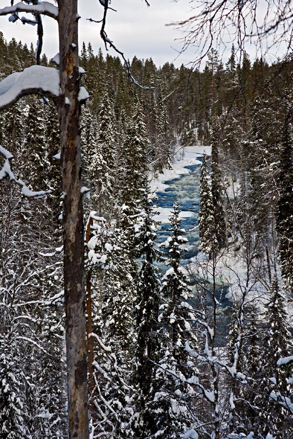Aallokkokoski rapids in Kitkajoki river at Oulanka national park in Kuusamo