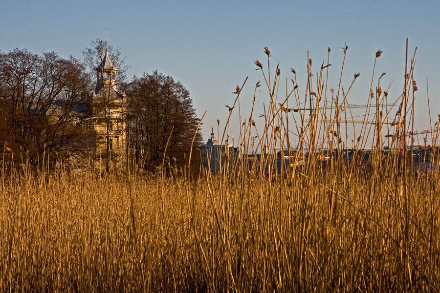 Linnunlaulun Villa Kivi, etualalla Töölönlahden pohjoispään kaislikkoa
