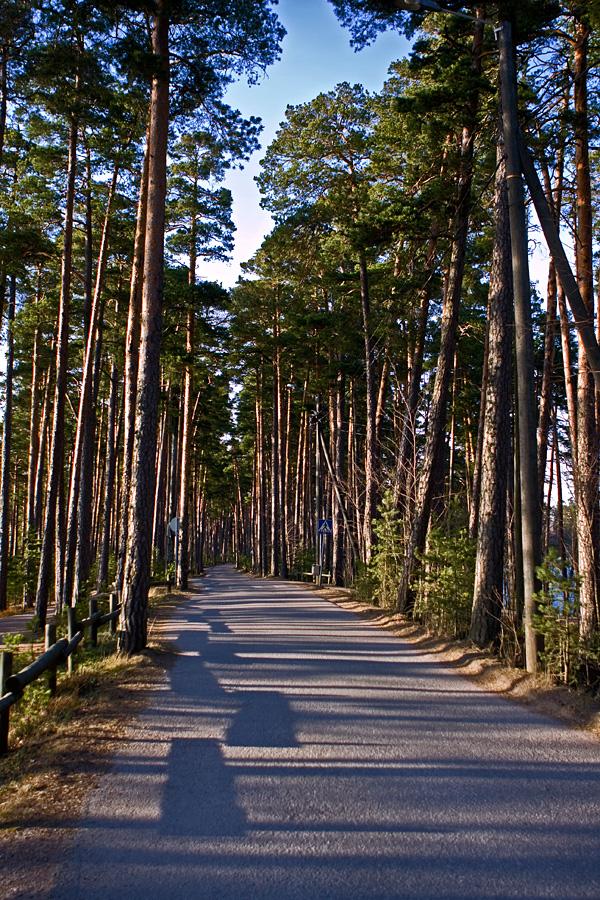 Esker scenery at Kallahdenniemi