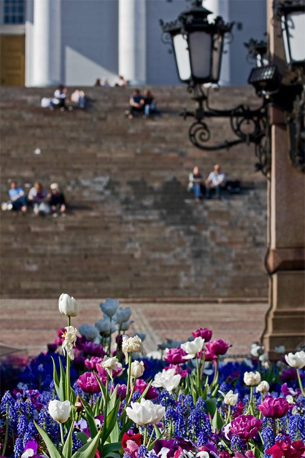 Kukkaistutuksia Aleksanteri II:n patsaalla
