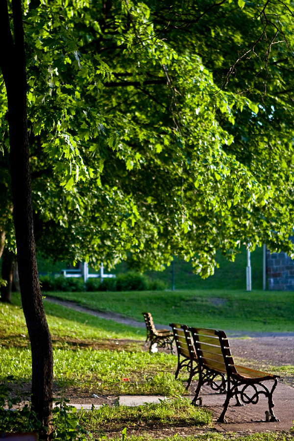 Penkkejä puistossa
