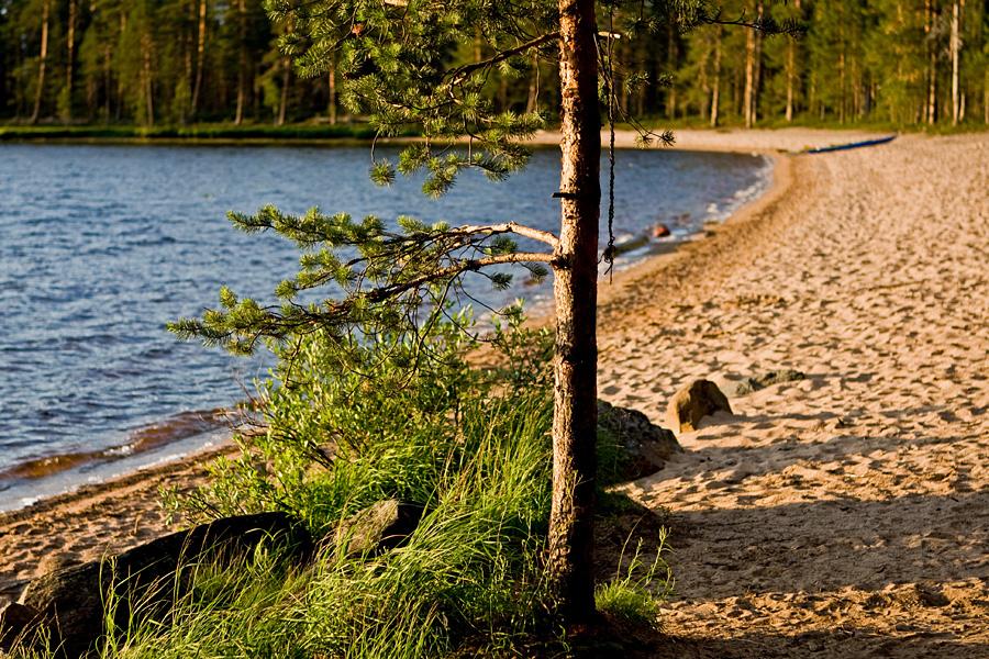 Venäjänhiekka beach at Tiilikkajärvi national park