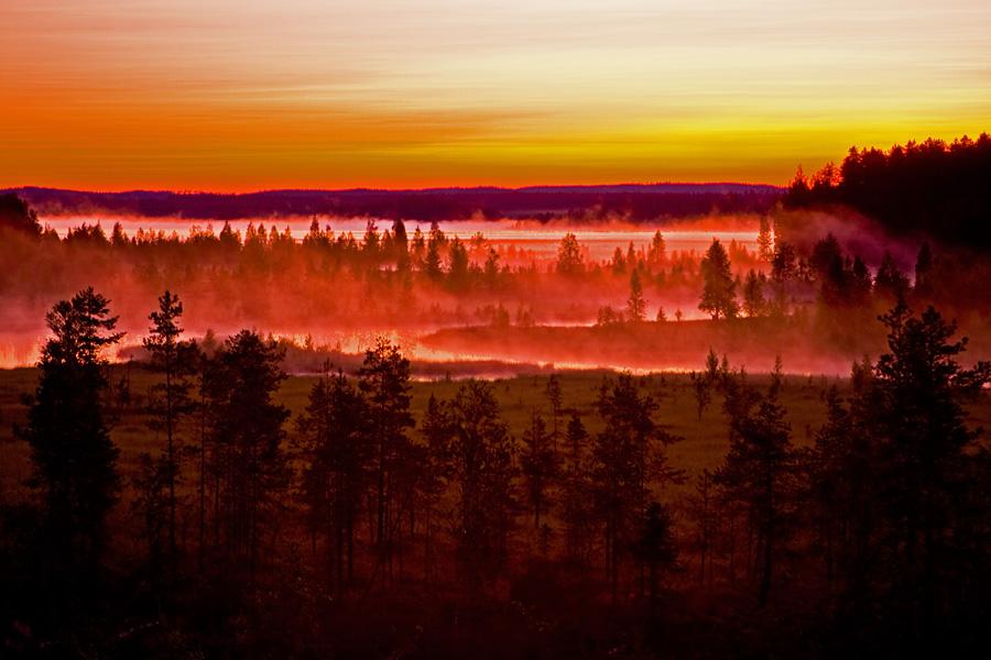 The foggy Ulkkajoki flows to Pankajärvi lake