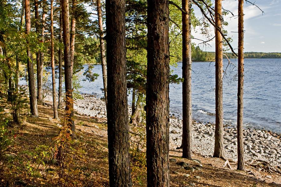 Pulkkilanharju at Päijänne national park