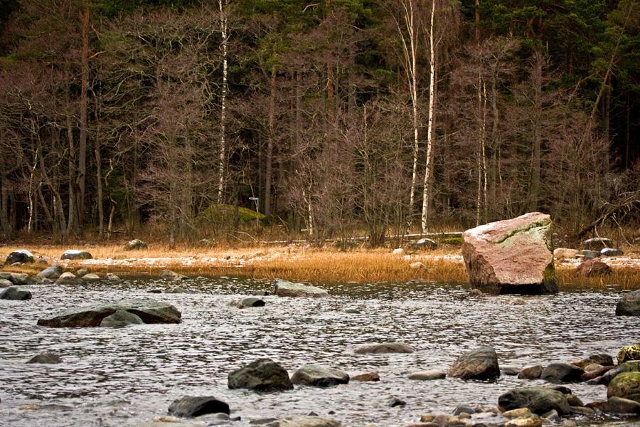 Shoreline at Särkkäniemi