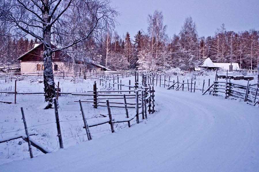 Skata farm